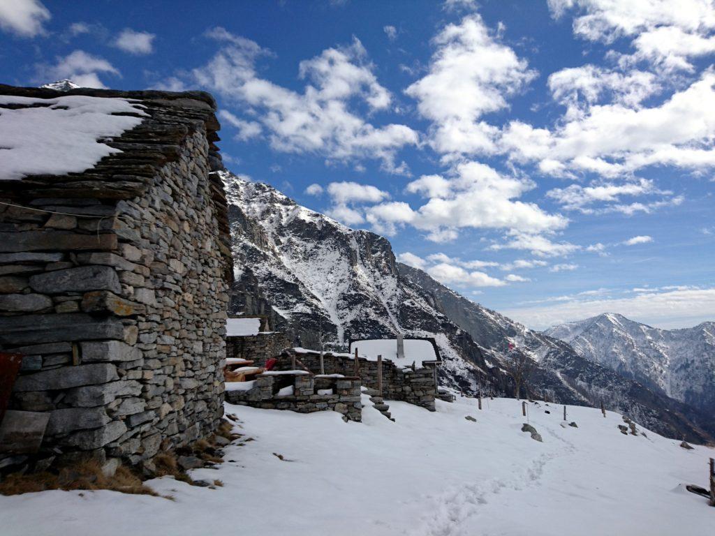 le casette dell'Alpe Bardughè