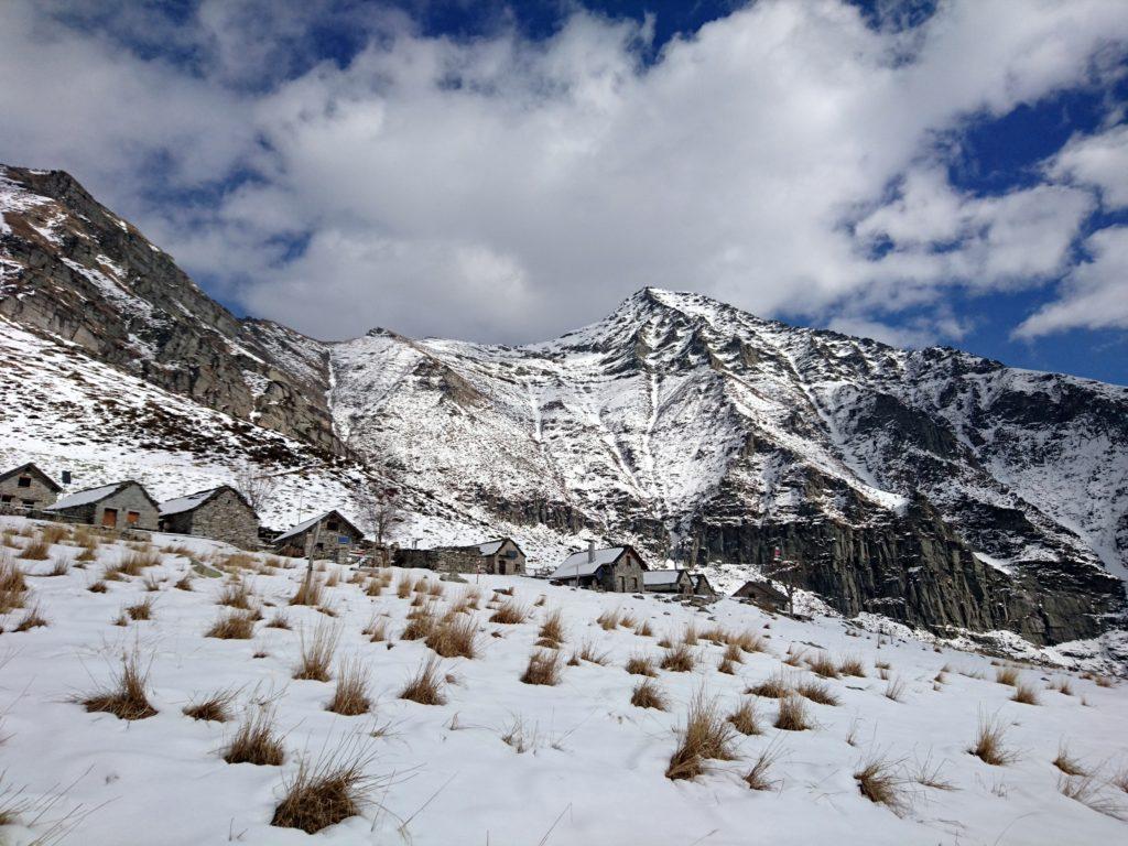 vista dell'Alpe Bardughè con alle spalle il Pizzo Vogorno