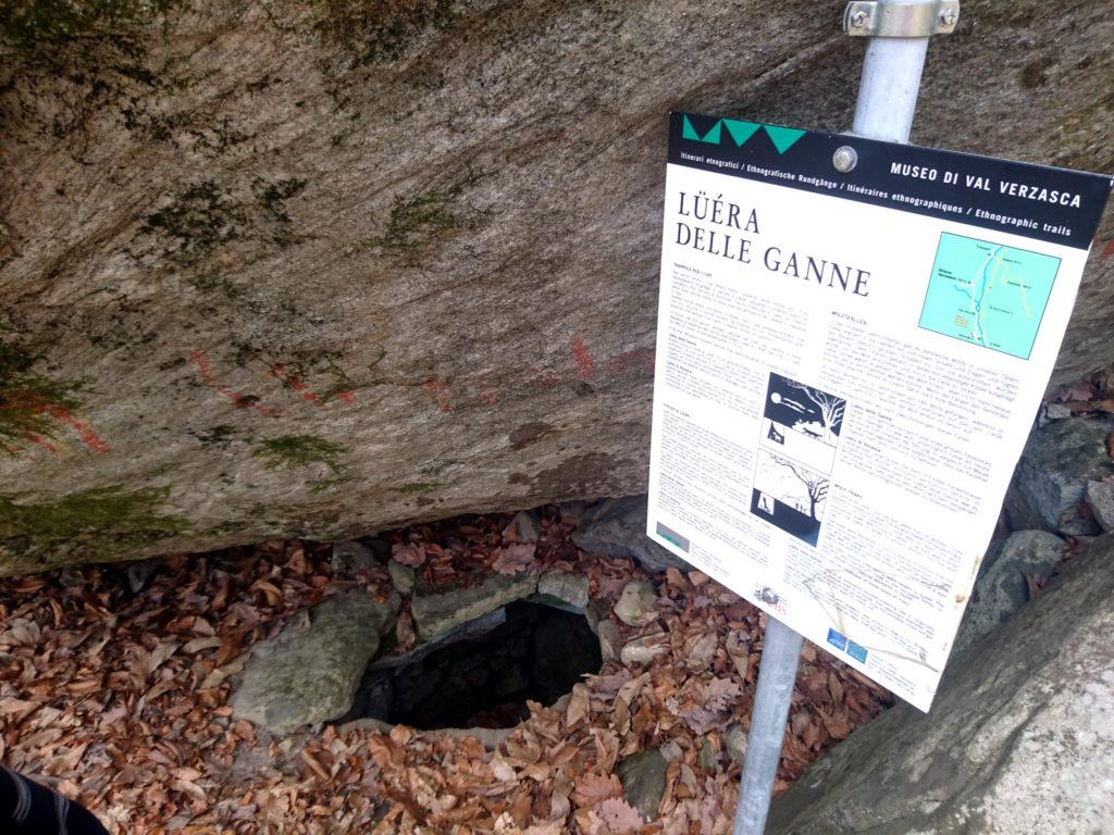 questa era una trappola per lupi. C'è stato un periodo in cui i lupi erano numerosissimi in questa valle