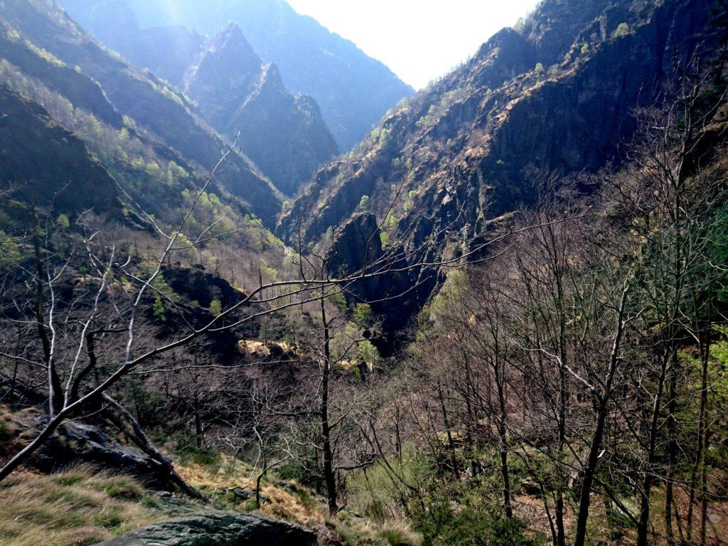 uno sguardo indietro, si riconosce il punto in cui, subito dopo l'Arca, il Rio Valgrande si infossa in un canyon