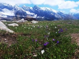 dal rifugio Gattascosa si gode di una meravigliosa vista su tutta la valle