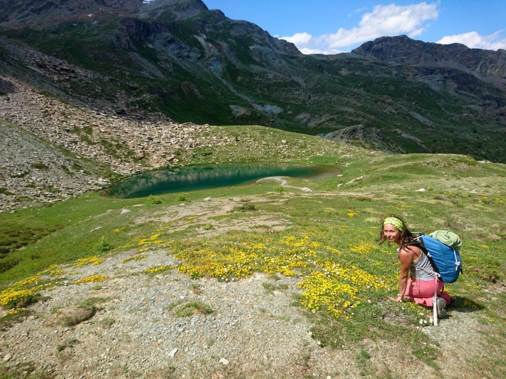 minuscoli fiorellini gialli: bisogna ammirarli da vicino!