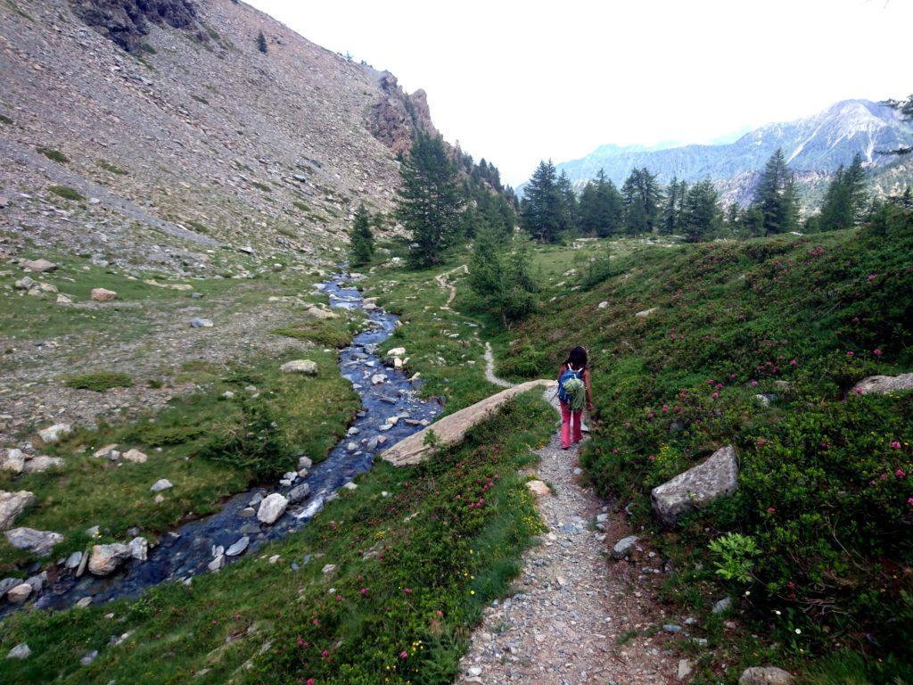 scendendo verso valle: il sentiero costeggia il torrentello di acqua cristallina
