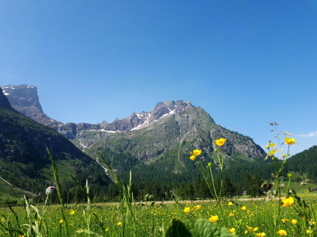 bellissima vistra dall'Alpe Devero della Punta della Rossa, della Bastionata, dell'Esmeralda e del Crampiolo