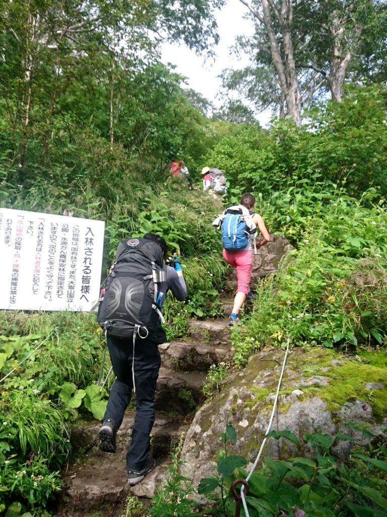 il primo tratto di sentiero, dopo la seggiovia, è una salita gradonata in un ambiente lussurreggiante e molto umido