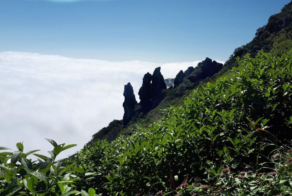 pinnacoli rocciosi (una rarità visto che sino a qui tutto è ricoperto dalla vegetazione)