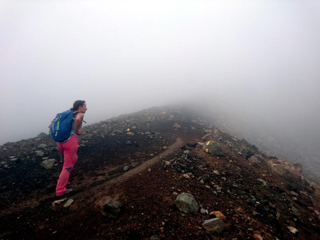 il sentiero sale zigzagando: avvertiamo un forte odore di zolfo e capiamo di essere prossimi ad un cratere