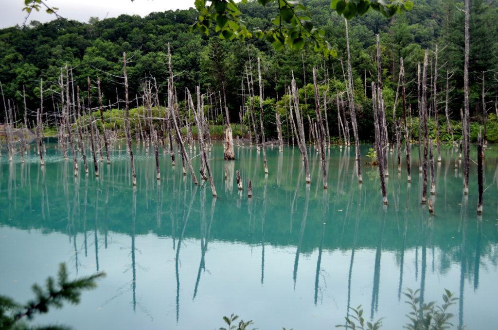 Blue Pond, Route 966