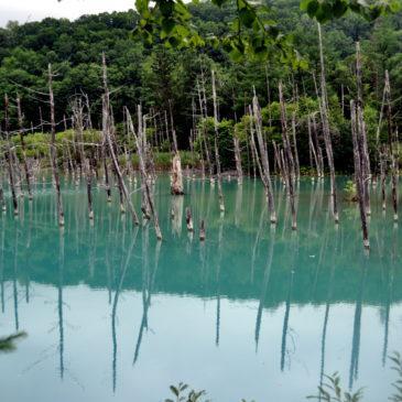 Nel cuore dell'Hokkaido: non solo trekking, in viaggio on the road