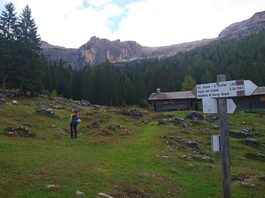 Erica alla malga di Vallesinella di Sopra, con già la Corna Rossa sullo sfondo