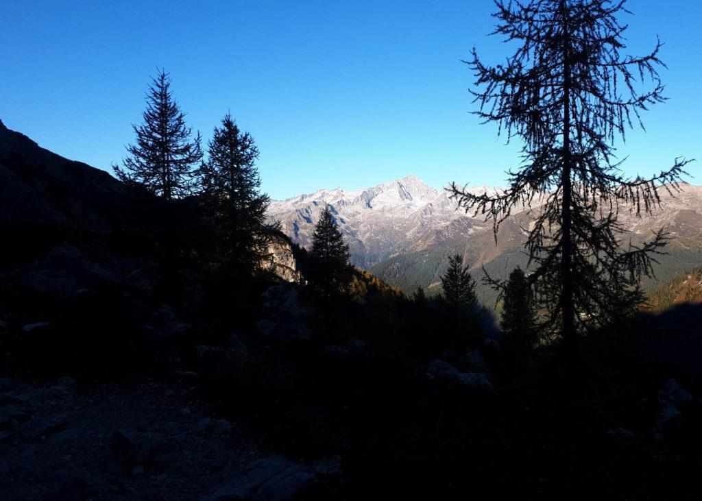 alba sul gruppo dell'Adamello-Presanella: la valle del Tuckett è ancora in ombra