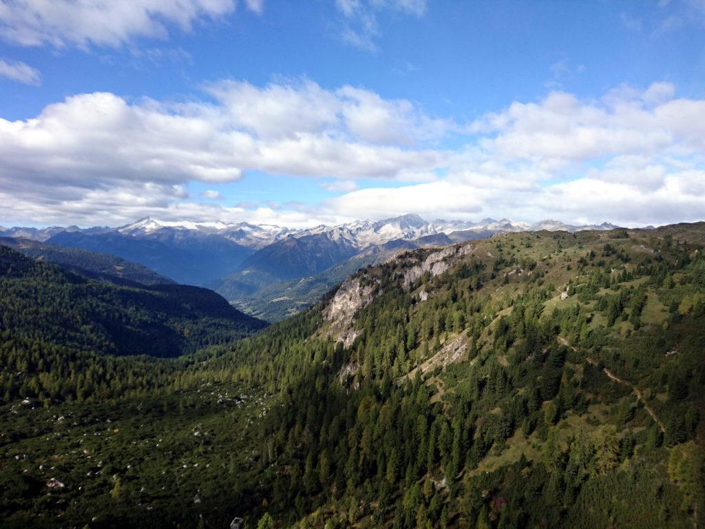 La spettacolare vista verso la Presanella e il Pian di Neve dalla nostra privilegiata postazione