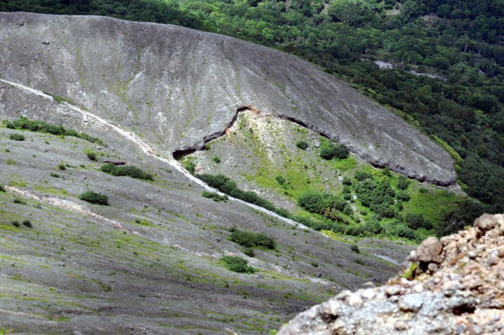terra giovane: la lava depositatasi chissà quanto inizia ad essere colonizzata dalle specie vegetali