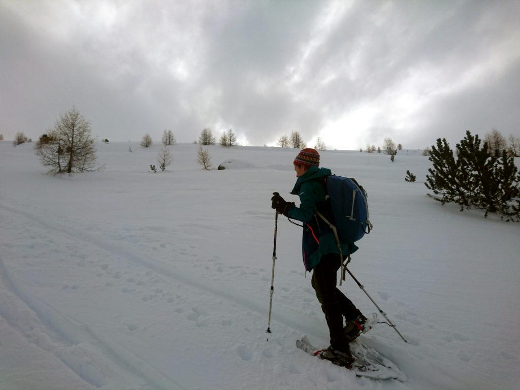 I pendii sono sempre morbidi e adatti anche a chi sale con le ciaspole (anche se con gli sci è un'altra vita, ovviamente)
