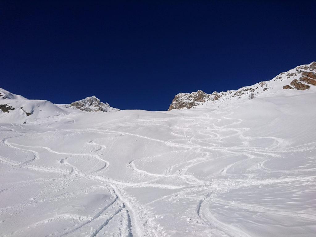 Le nostre sbisciule nella parte superiore della gita. Neve molto buona!!!