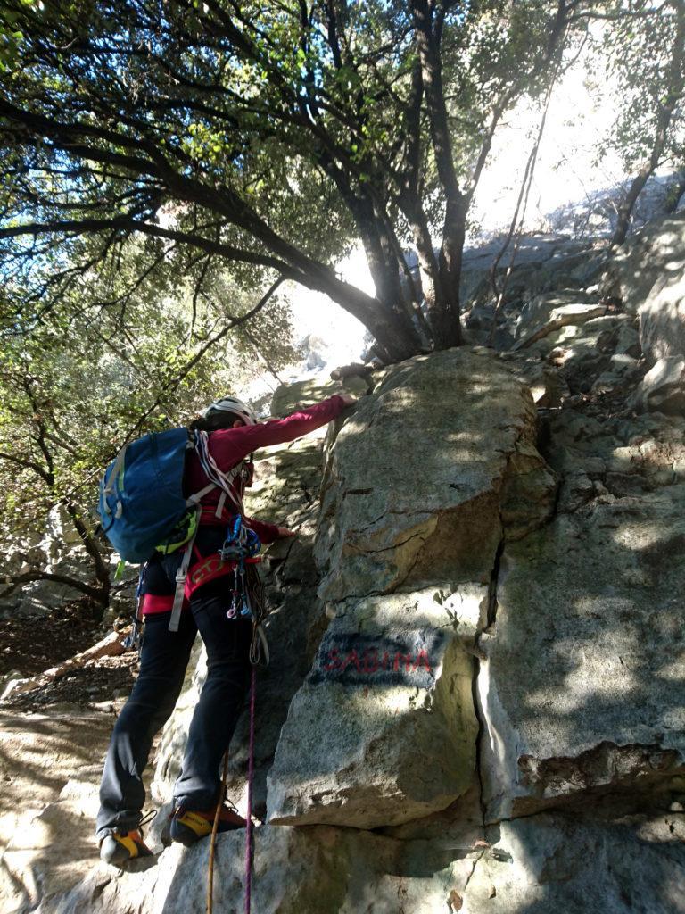 il primo tiro passa sulle roccette accanto alla scritta, stando a sinistra dell'albero
