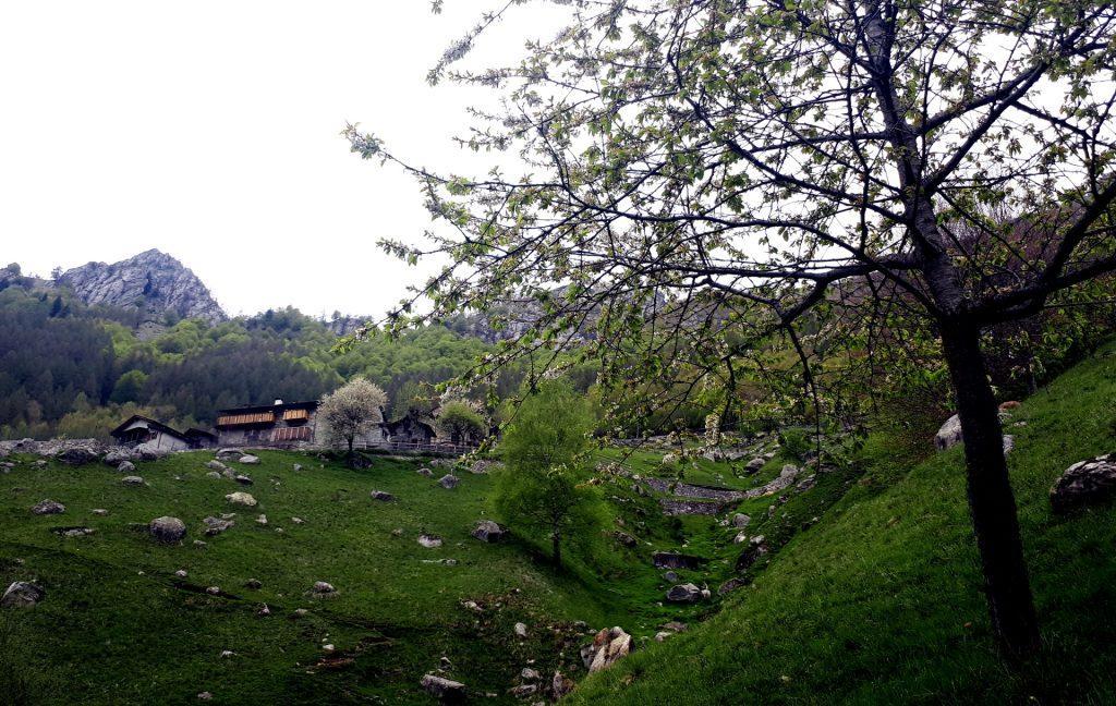 Ecco che dopo una risalita appaiono le prime case di Frasnedo city