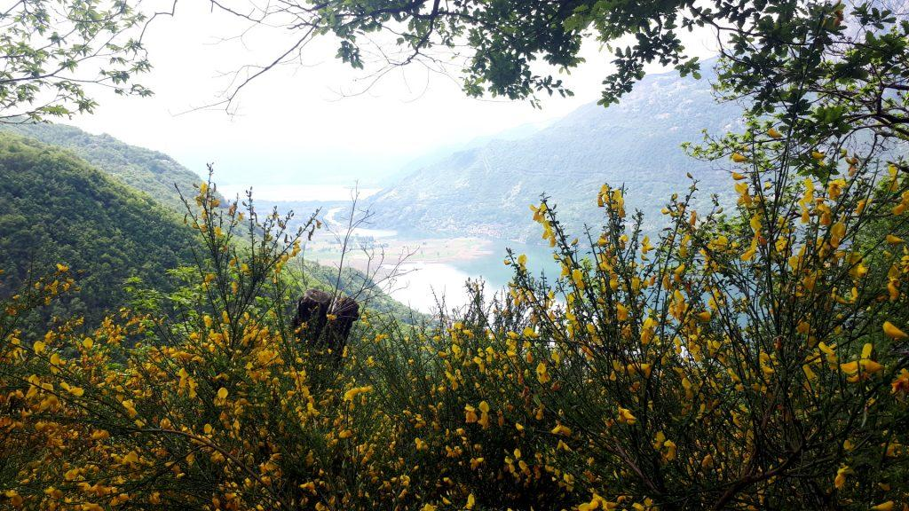 il lago di Novate Mezzola lungo il nostro percorso di discesa
