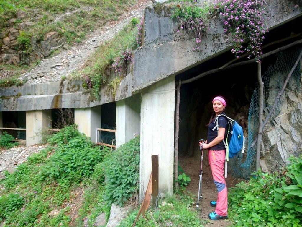 Si attraversa questa piccola galleria che le capre hanno trasformato in tettoia per la notte, nonché nel loro bagno di fiducia :P