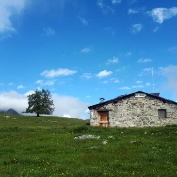 Anello Alpe Granda – Alpe Scermendone – Croce del Om