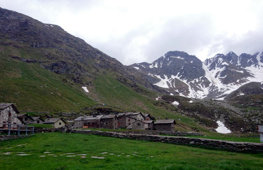 Eccoci finalmente all'Alpe Angeloga. Ora dobbiamo trovare un posto dove piantare le tende