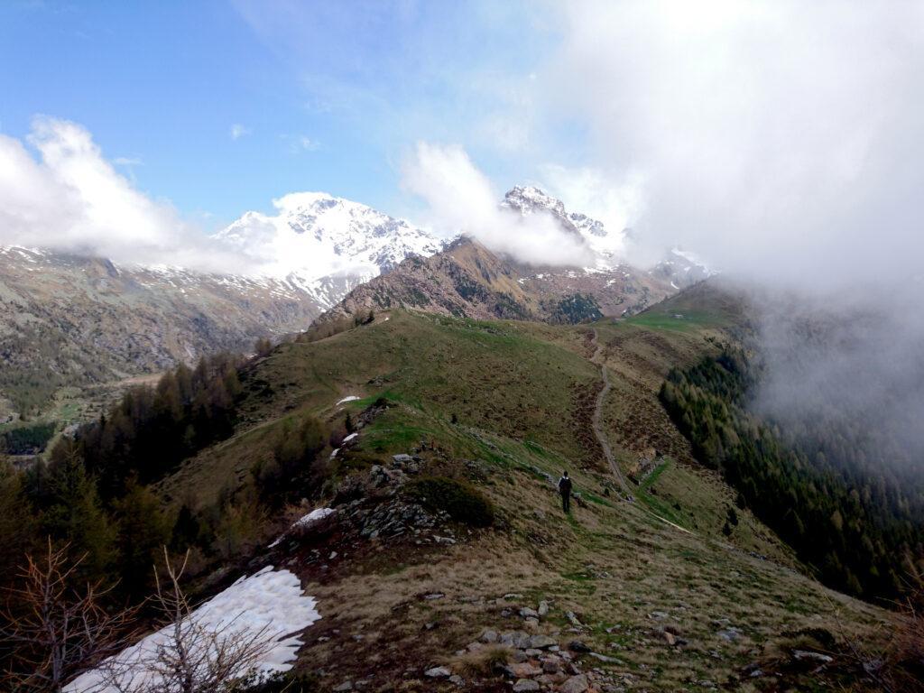 lungo i prati dell'Alpe Scermendone, in direzione di San Quirico