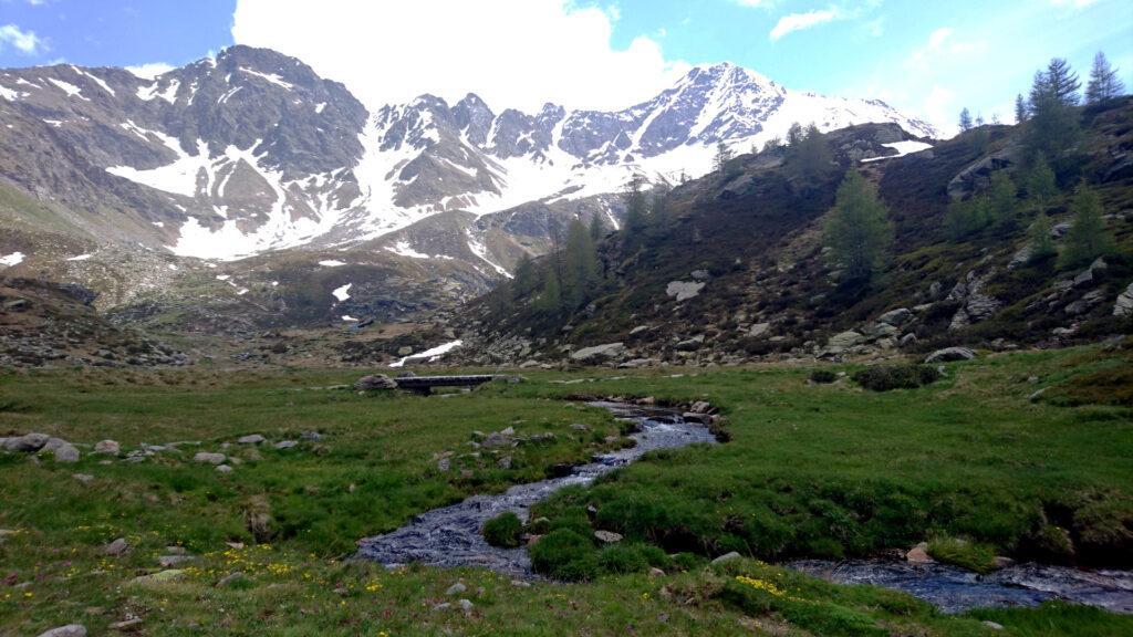 Salutiamo la bellissima Alpe Angeloga e torniamo verso valle
