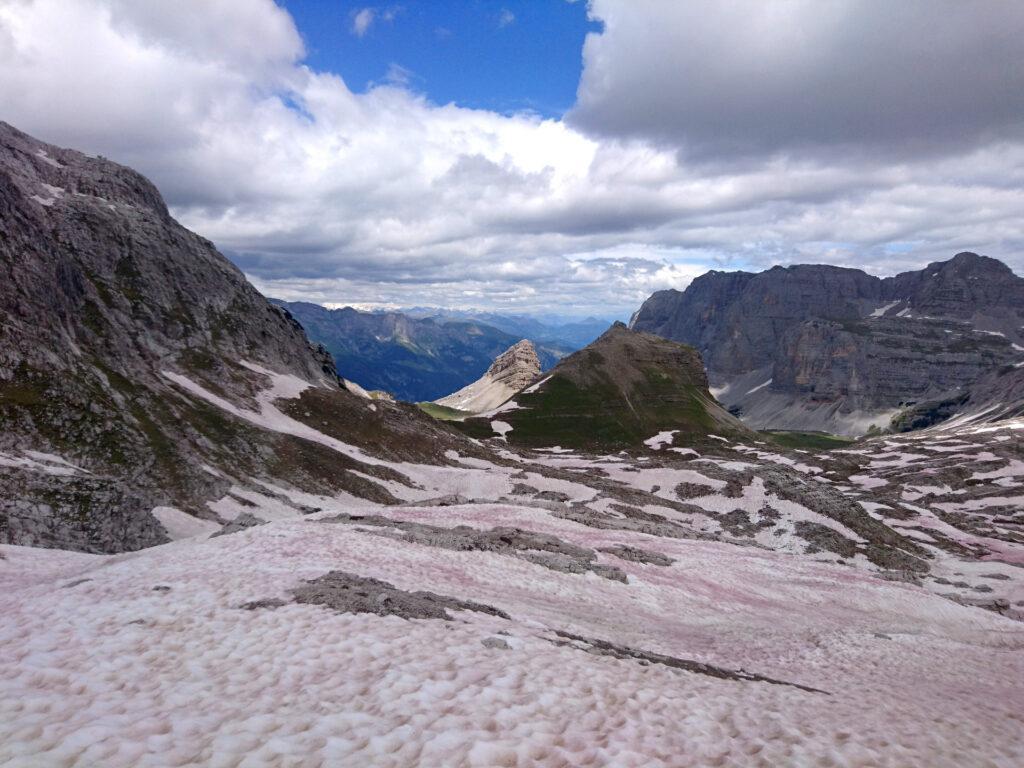 I colori surreali di questa valletta. La neve è rossa a causa di un'alga-batterio