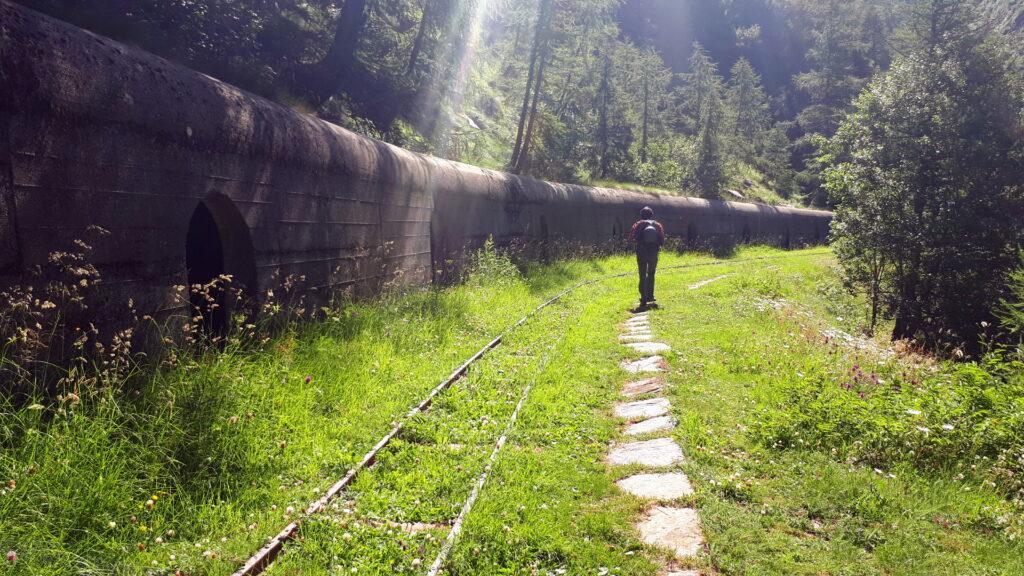 Sul bordo del lago ci sono i resti degli impianti dell'Enel con tanto di ferrovia ormai mangiata dalla vegetazione