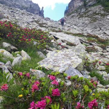 Anello del Pizzo del Becco – Vallone di Sardegnana e lago Colombo