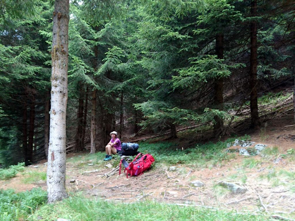Saltiamo in avanti diverse ore. Qui siamo scesi fino a 1700 mt di quota in un bosco con molti alberi abbattuti e ora ci tocca risalire fino a 2100 e rotti. L'umore prima della risalita non è dei migliori :P