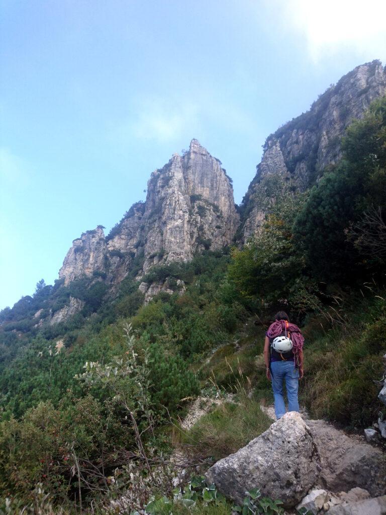 il sentiero che conduce alla Forcella di Nord Ovest, passando proprio accanto alla Torre Bovental