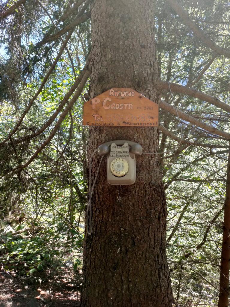 telefono a disco all'inizio del sentiero: un pezzo d'antiquariato!