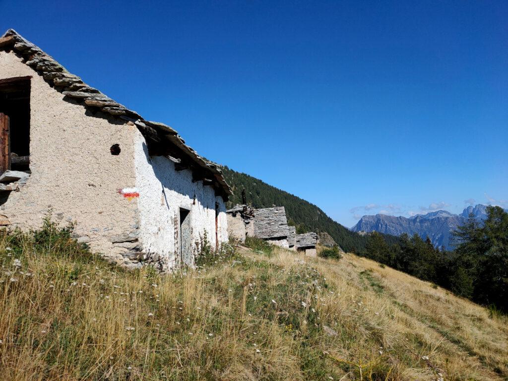 Alpe Rono