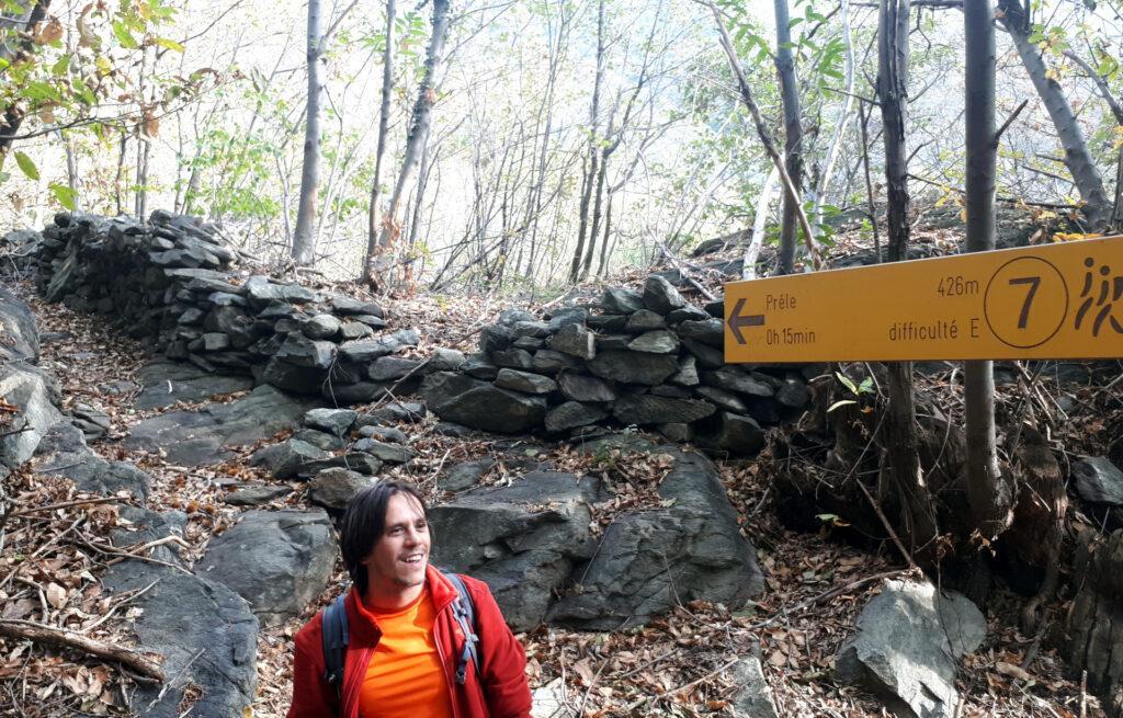 il sentiero appena percorso, costeggiato da vecchi muri a secco