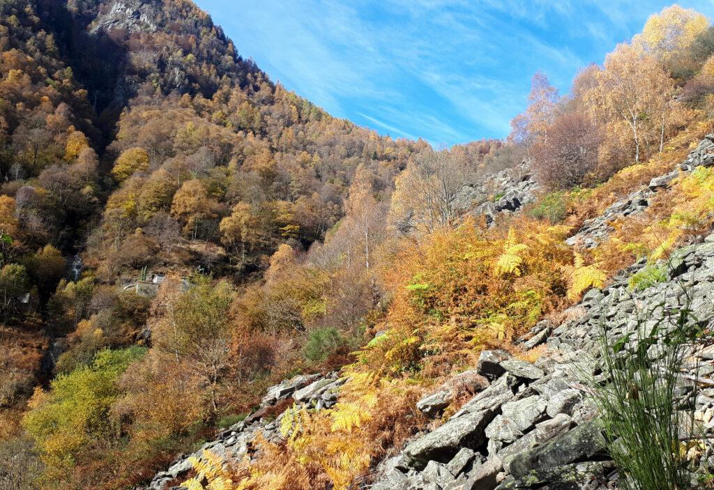 subito dopo Ceresolo c'è un tratto di sentiero non proprio entusiasmante (ma i colori sono sempre bellissimi)