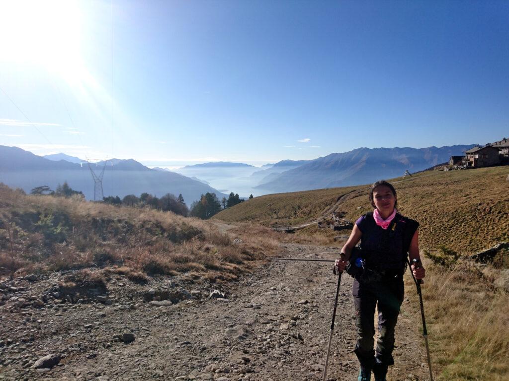 la carrozzabile sulla quale si cammina comodamente sino all'Alpe di Mezzo