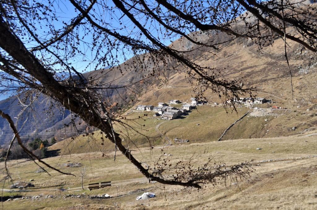 sempre l'Alpe di Mezzo, incorniciata dai rami spogliati dall'inverno