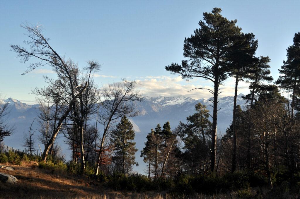 dall'Alpe Godone: anche qui, una vista niente male!
