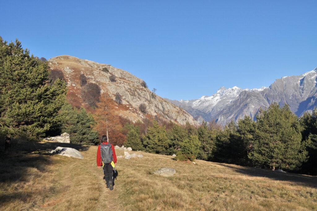la radura dell'Alpe Godone