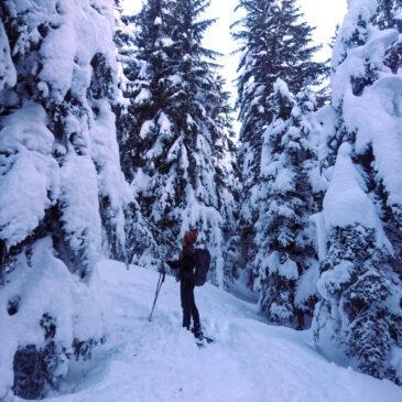 Monte Lago dall'Alpe Piazza – Scialpinistica o Ciaspolata – con neve super