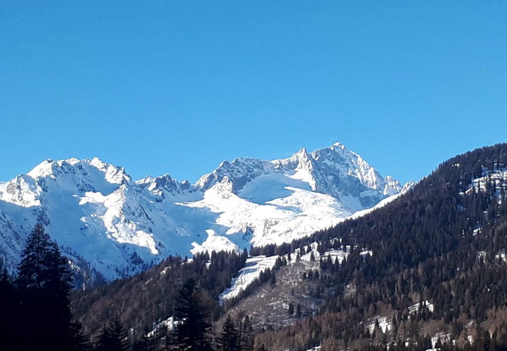 Bello scorcio della Presanella e del Monte Nero di fronte a noi