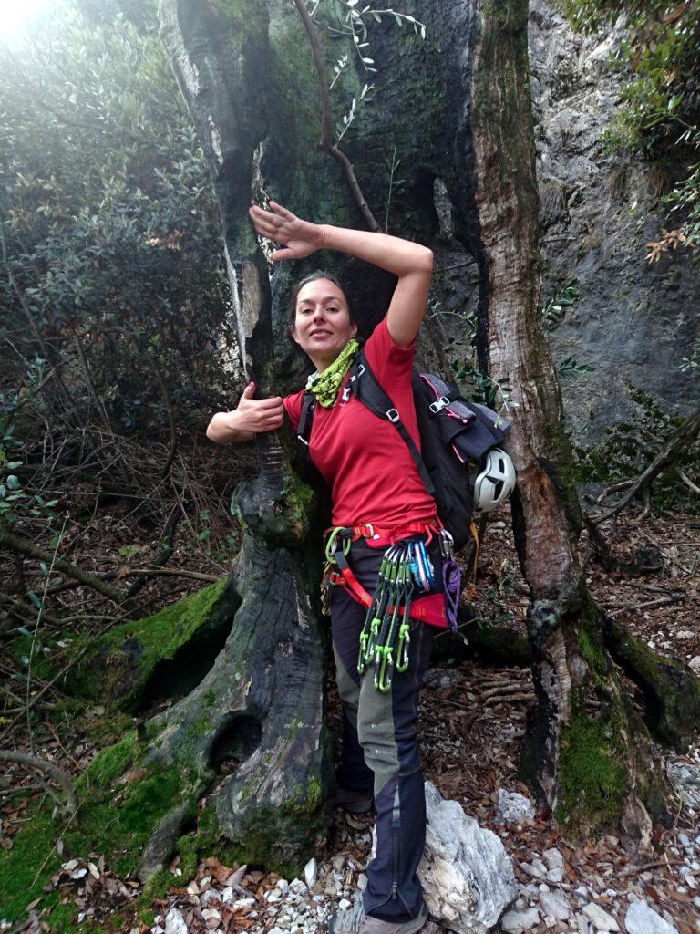 Erica gioca con un albero scorticato sul sentiero che risale verso Pregasina