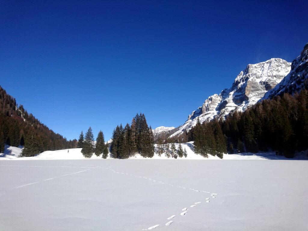 Le orme di Erica e la traccia dei miei sci in mezzo al lago