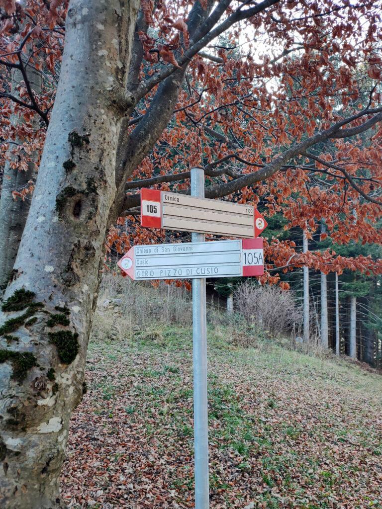 Il sentiero che porta a Santa Brigida dal Colle della Maddalena
