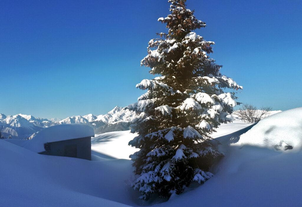 casette (di cacciatori?) che sbucano appena dalla neve