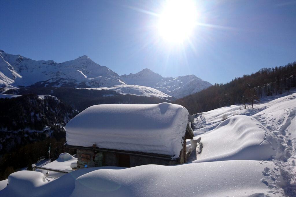 oggi fa un bel freddo, ma superato il bosco il sole garantirà temperature più che accettabili