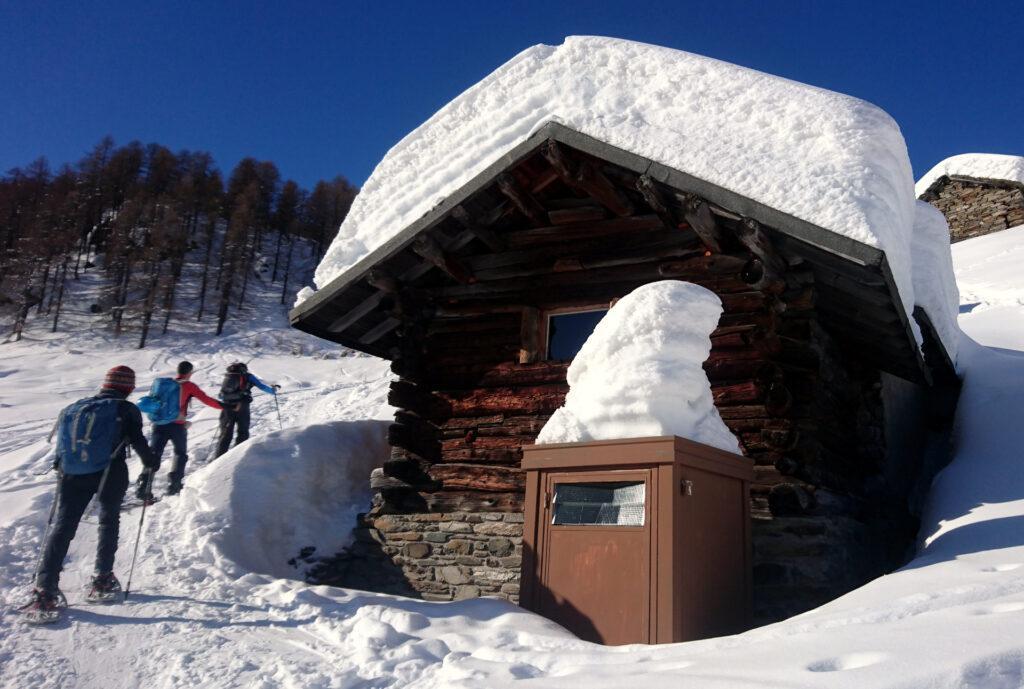 la neve, copiosa quest'anno, crea buffe sculture
