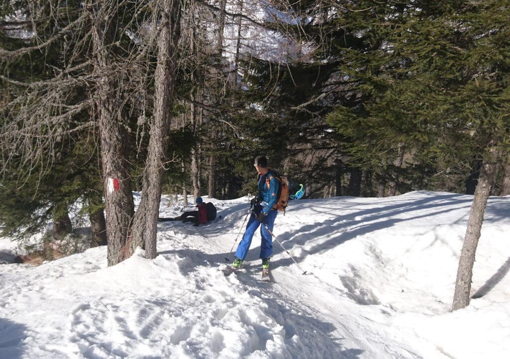 La salita nel bosco verso il rifugio Palù sarà ricca di tratti ghiacciati che creeranno non pochi problemi al nostro Zano