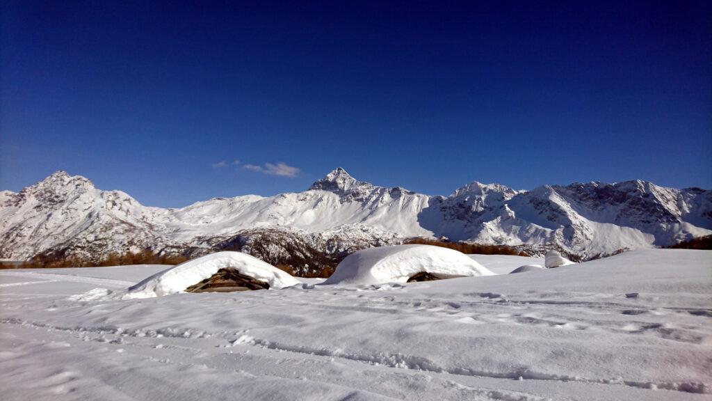 Le baite dell'Alpe Campolungo con il Pizzo Scalino sullo sfondo